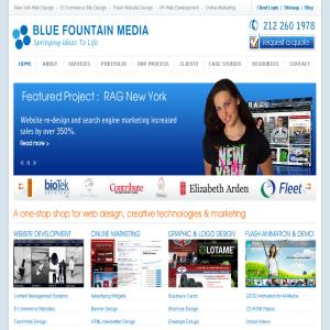 Website Design Services - Blue Fountain Media
