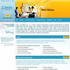 Dana Consulting, Inc: custom software development
