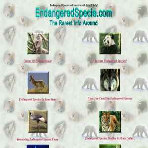 Endangered Species | EndangeredSpecie.com