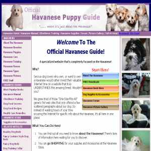 Havanese Puppy Guide