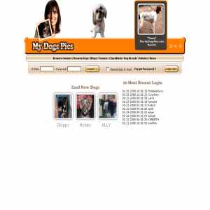 Dogs Pictures | Breeds