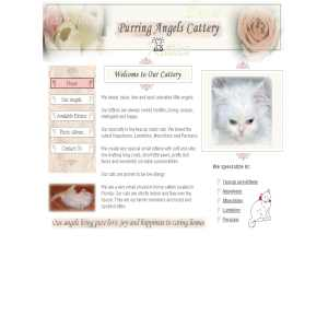 Purring Angels Cattery