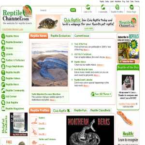 Reptiles Channel