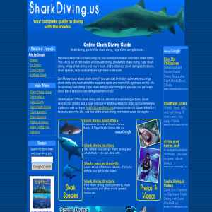 Cage Shark Diving
