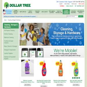 Cleaning supplies - Dollartree