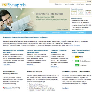Synaptris Reporting Tools