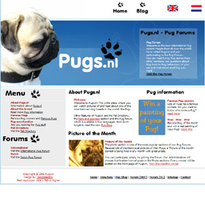 Pugs - Old dog breed