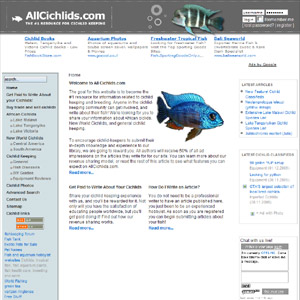 Central American Cichlids